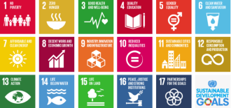 The Sustainable Development Goals (SDGs) and Global Health