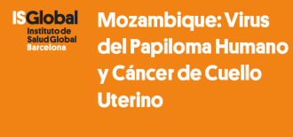 Mozambique: Human Papillomavirus Infection and Cervical Cancer