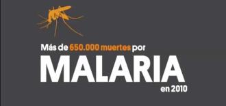 Malaria, the Story of a Vaccine (Summary)
