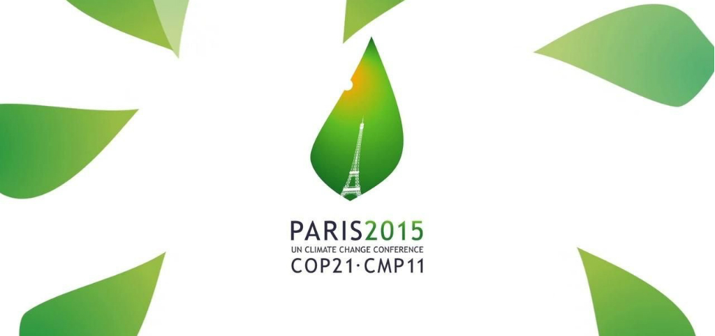 Paris COP21, Results and Expectations