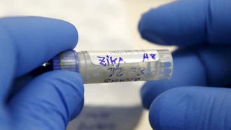 The Million Dollar Question: When Will We Have a Vaccine Against the Zika Virus?