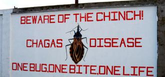 New Coalition Launched to Save Chagas Disease From Oblivion