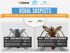 Usual Suspects - Aedes