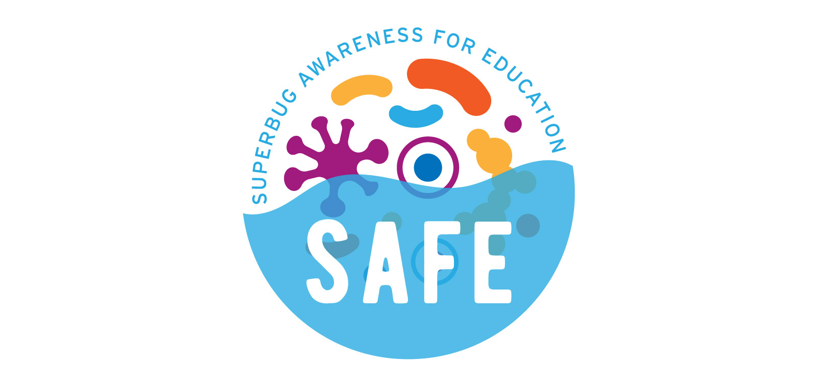 SAFE project logo web