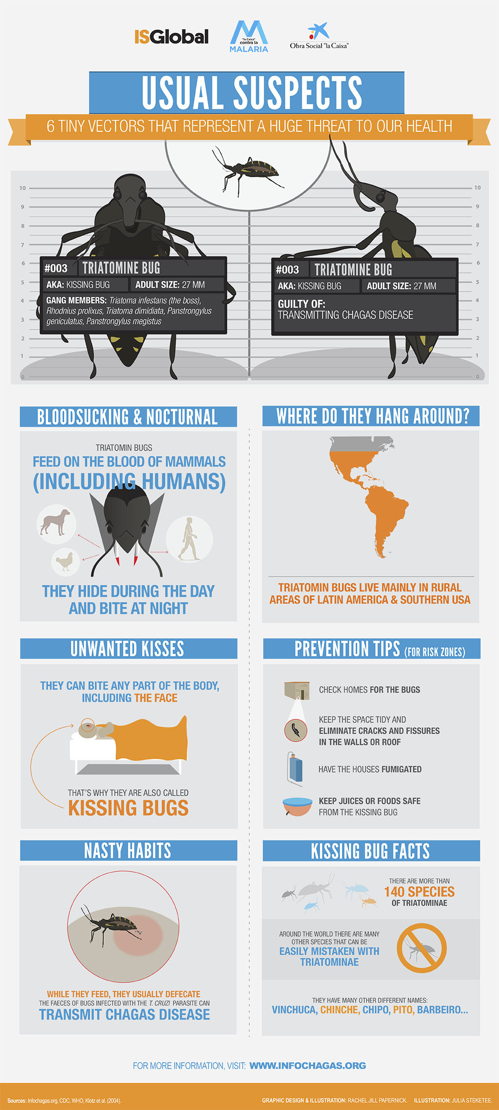 Infographic Usual Suspect 003: Triatomine Bug