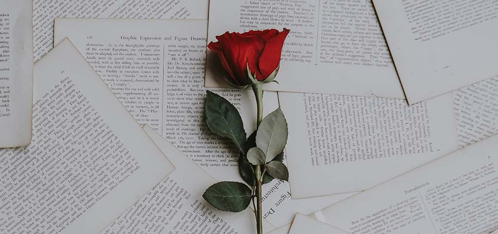 A red rose lies on some book pages