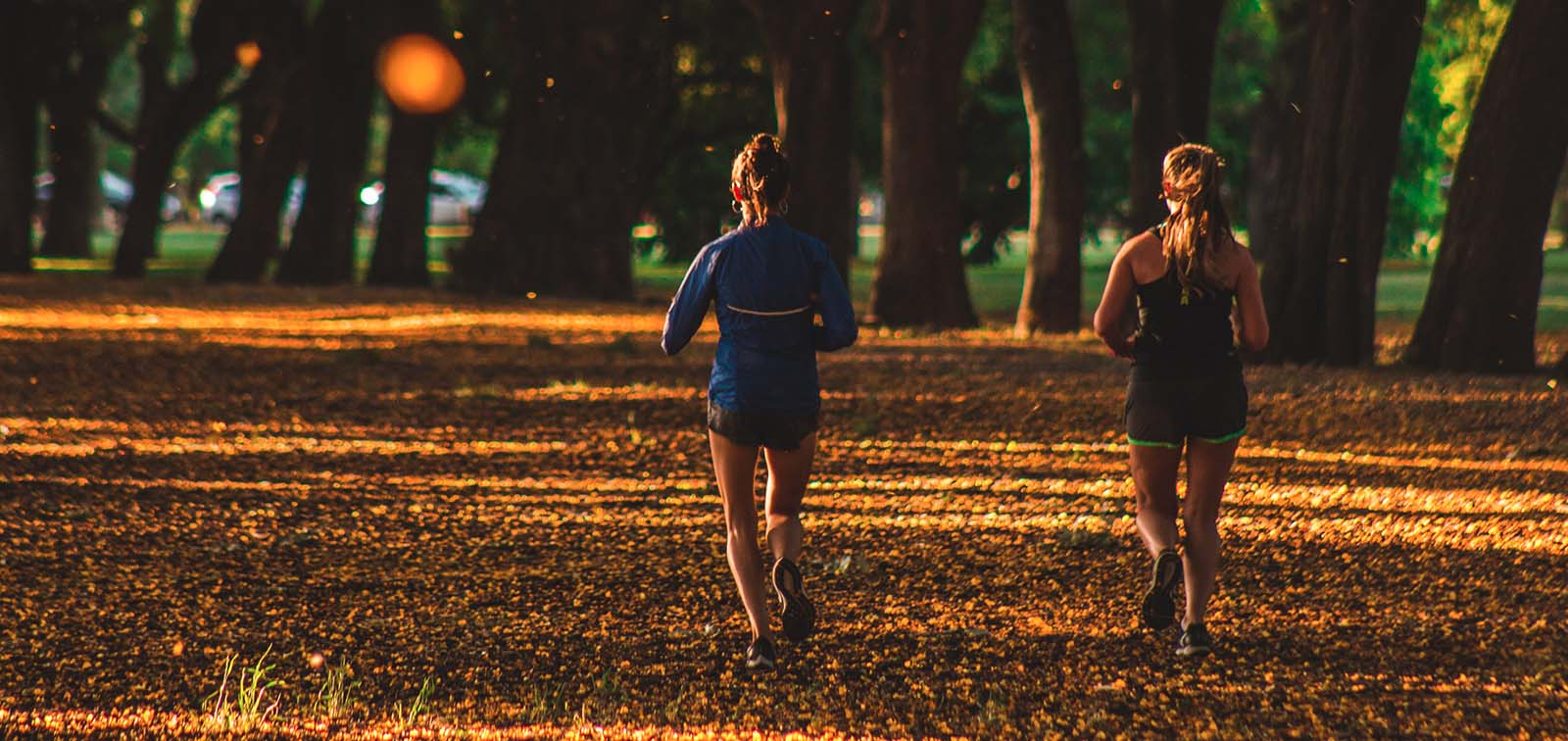 Physical Activity in the Morning Could Be Most Beneficial Against Cancer