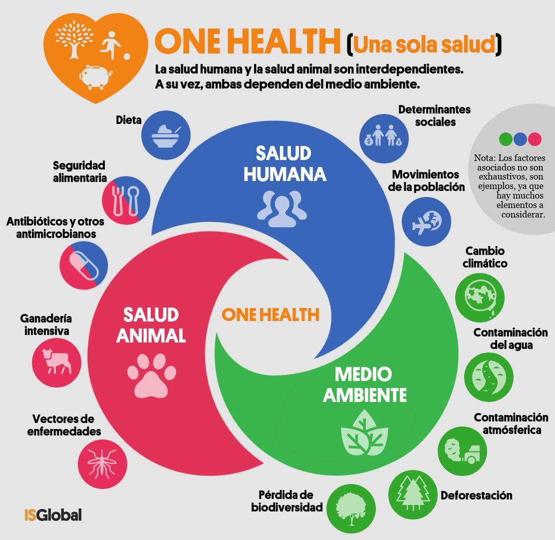 One Health (una sola salud) o cómo lograr a la vez una salud óptima para las personas, los animales y nuestro planeta - Blog - ISGLOBAL