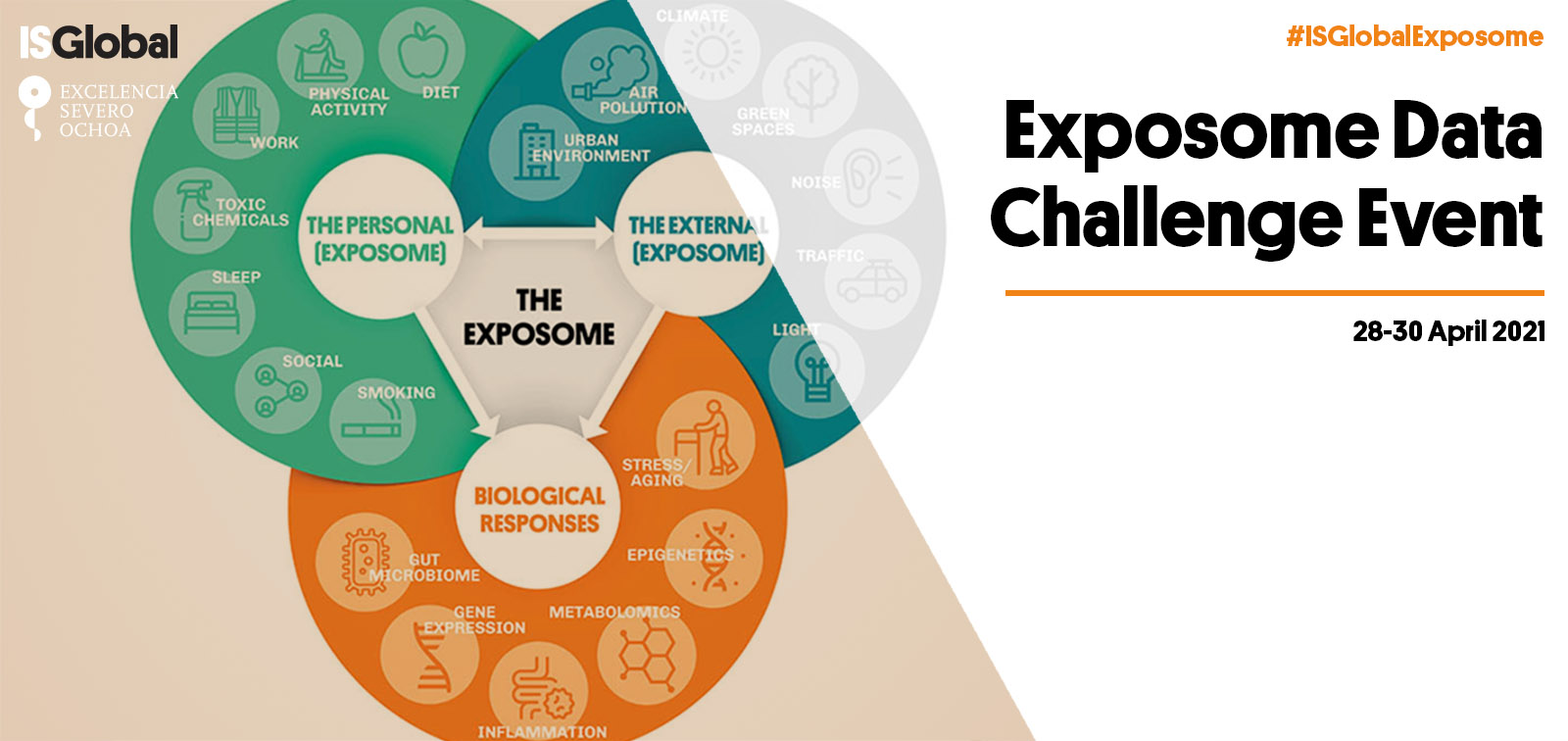 Exposome Data Analysis Challenge